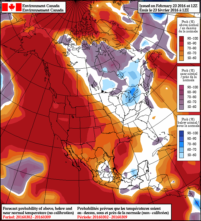 NAEFS 8-14 Day Temperature Anomaly Forecast — Valid March 2 to March 9, 2016